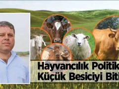 """""""Hayvancılık Politikaları Küçük Besiciyi Bitiriyor"""""""