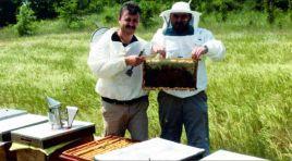 Arıcılar Birliği Başkanı Üreticilere Seslendi