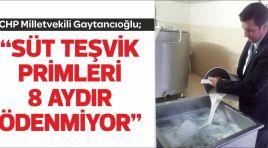 """GAYTANCIOĞLU; """"SÜT TEŞVİK PRİMLERİ 8 AYDIR ÖDENMİYOR"""""""