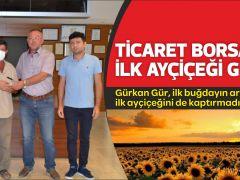 TİCARET BORSASINA İLK AYÇİÇEĞİ GELDİ